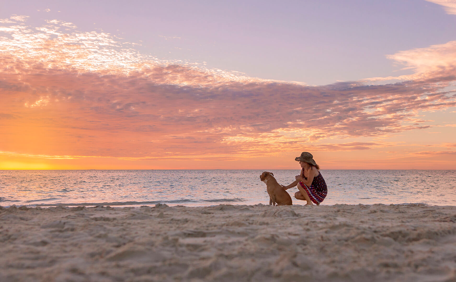 IMG_2571-sunset dog photo.jpg