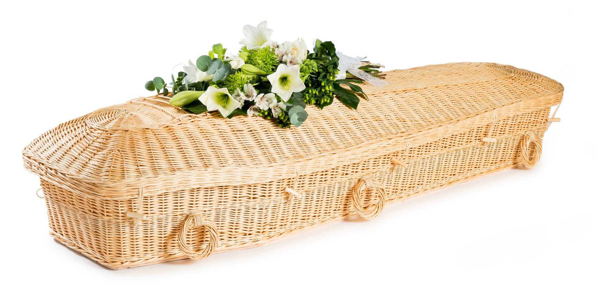 Willow Pod Coffin - Available from thinkwillow.com