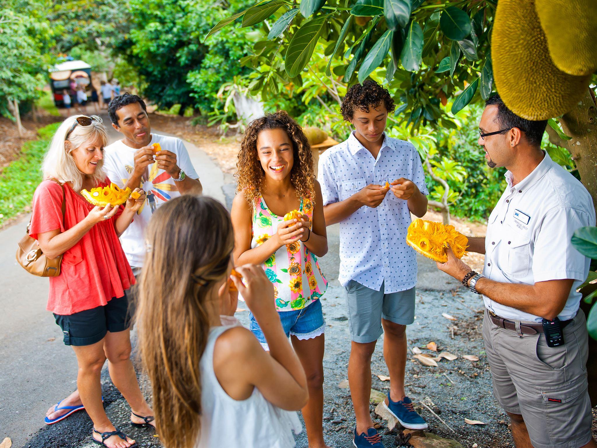 tropical-fruit-world-9814778.jpg