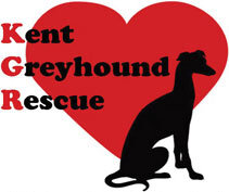 Kent Greyhound Rescue - Registered charity.