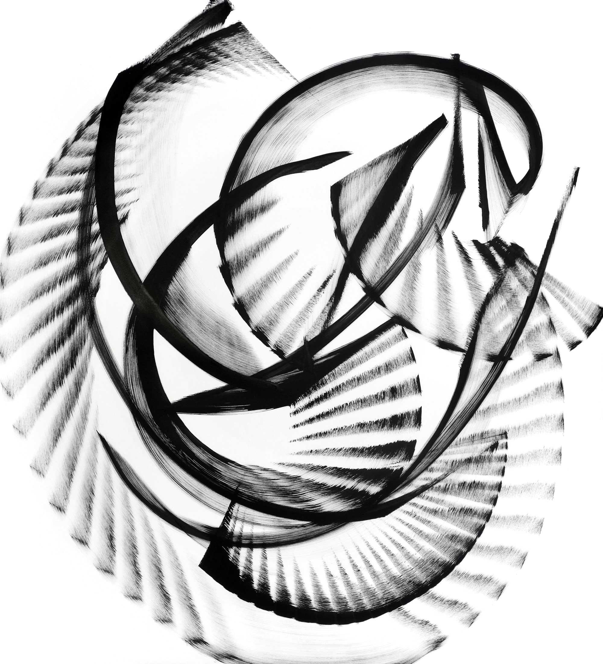 "Cyanea-pycnocarpa, ink on paper,44""x 40"""
