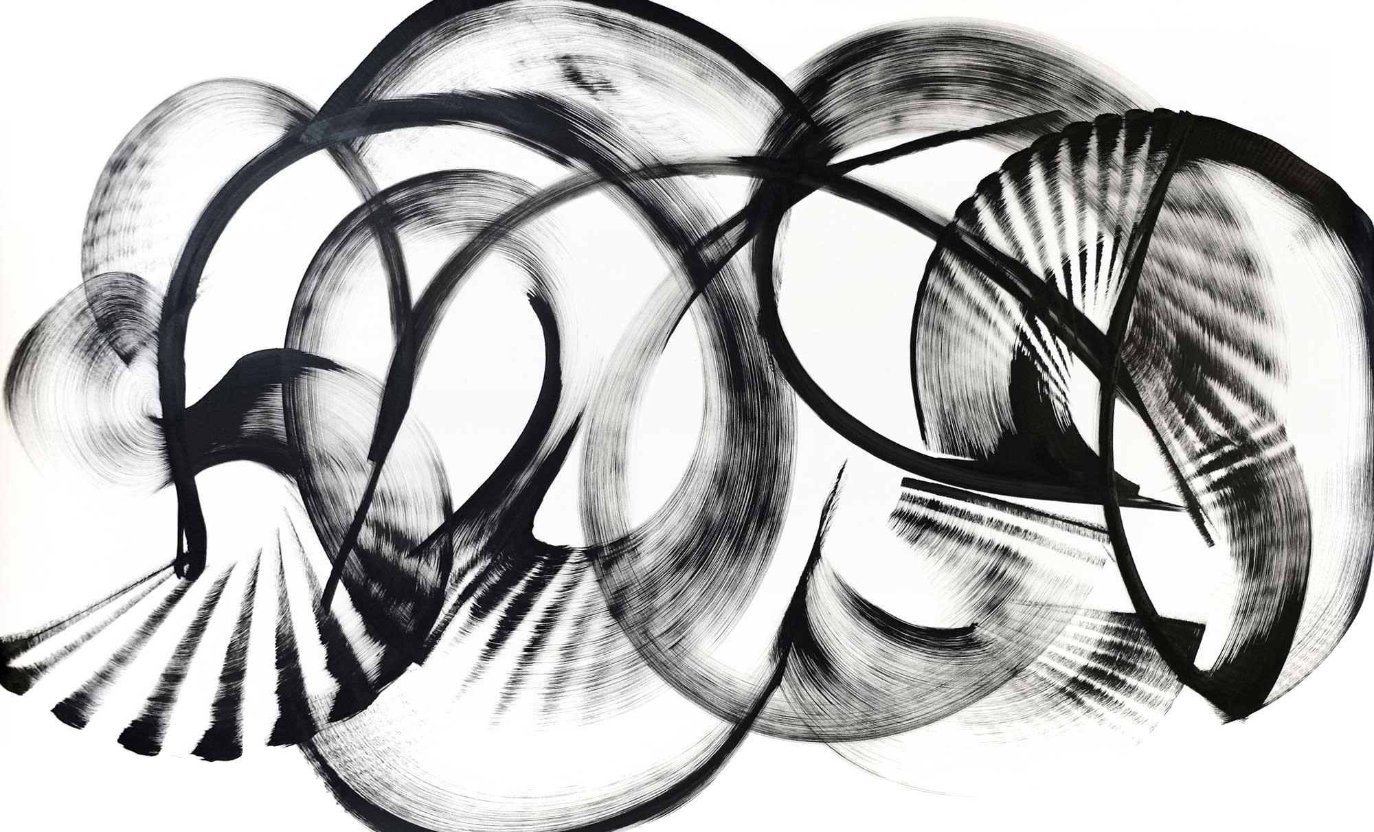 "Orbexilum macrophyllum, ink on paper, 40"" x 66"""