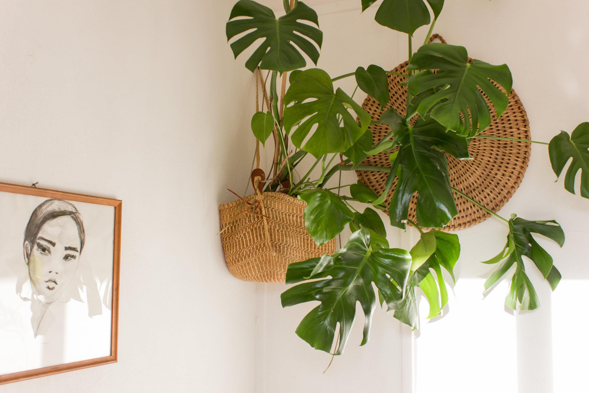 Planteophænget giver mig en vibe af asiatisk minimalisme. Haps, det ser cool ud! Du kan nemt og billigt gøre Louise kunsten efter. Frem med flettasken, mormor!