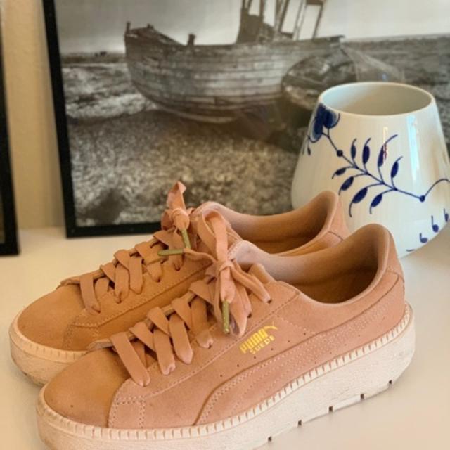Puma Sneakers royal.jpeg