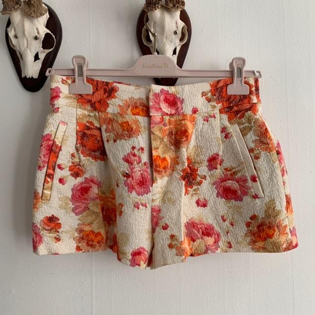 Zara Shorts.jpeg