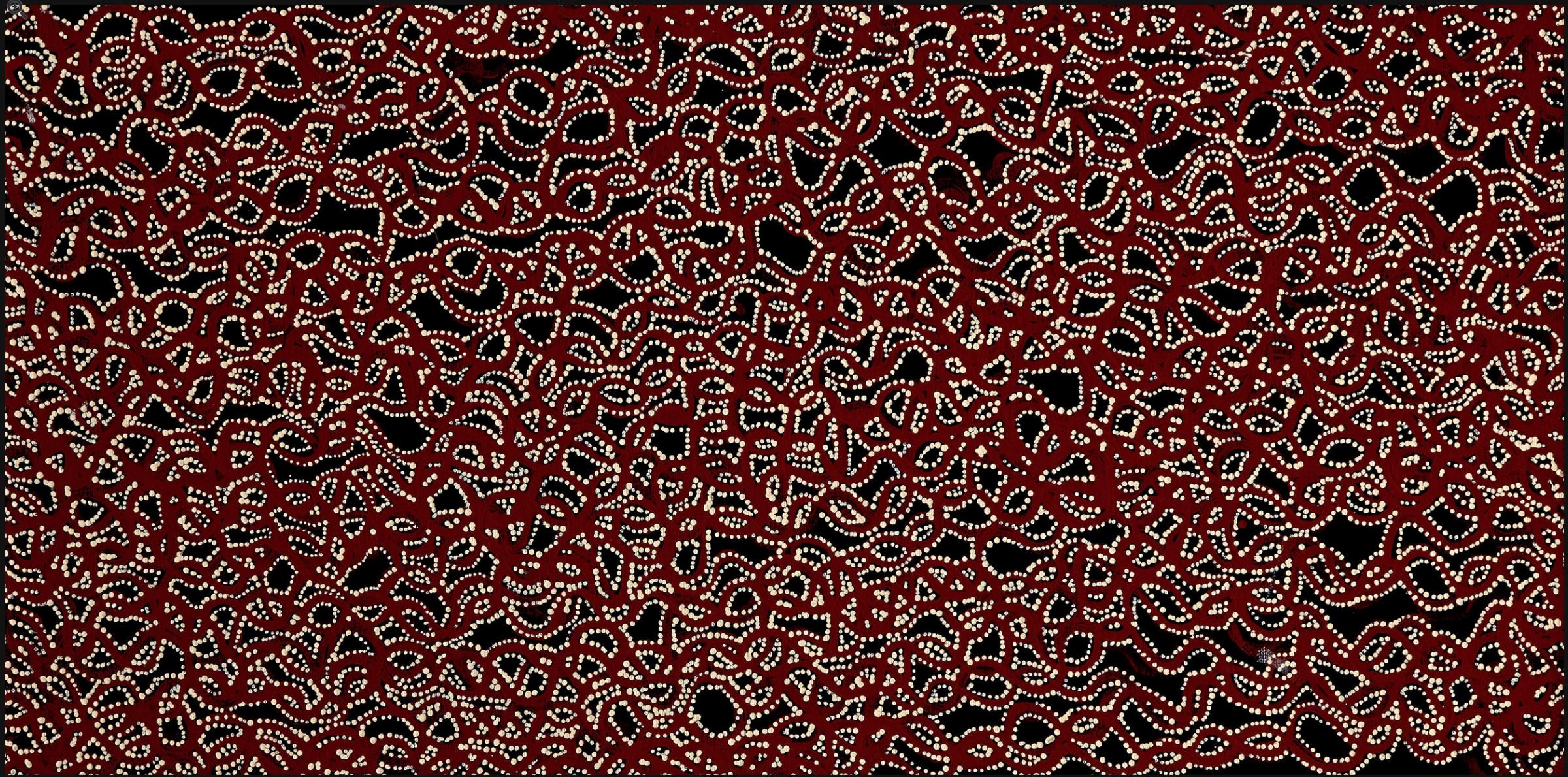 Ngalypi Jukurrpa Yanjirlpiri,Snake Vine Dreaming, by Geraldine Napangardi Granites
