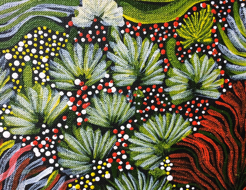 Detail of local flora from a vibrant painting by Colleen Ngwarraye Morton,'Women's Ceremony and Bush Medicine' –  sold through our ART page & in our Tetbury gallery .