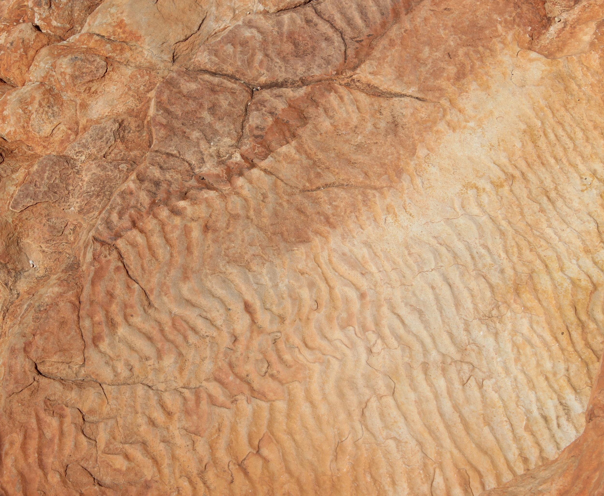 Tidal mark, Kings Canyon inside Watarrka National Park, Northern Territory, Australia.