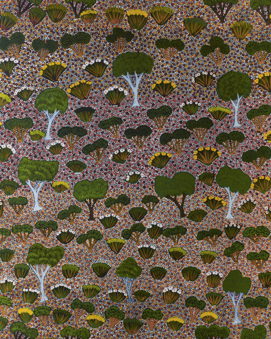 Australian Aboriginal Botanical Art Wallpaper Green, reds, yellows, Eucalyptus, Sugar bag trees & dots. Contemporary, ethnic & Arts & Crafts style. Bay Gallery Home, UK.