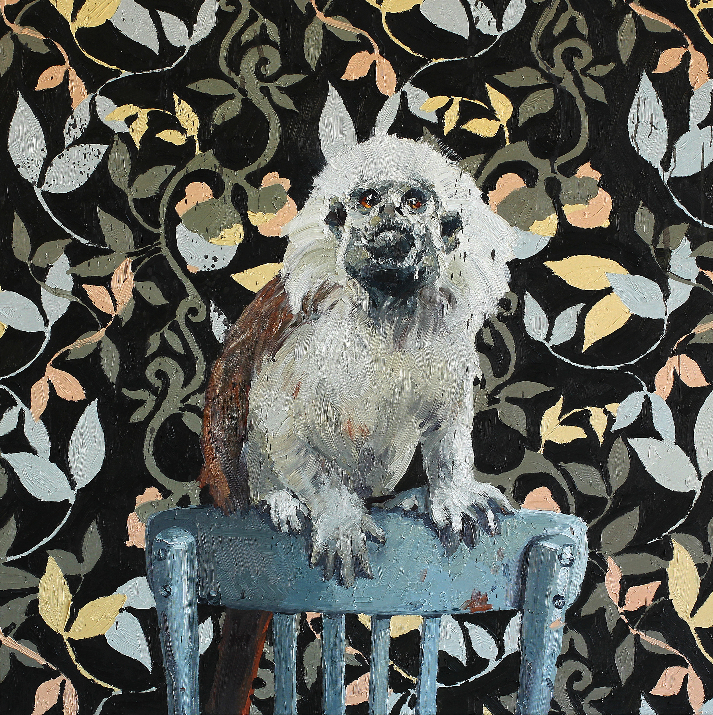 Bommullstopp-tamarin på merkelig stol | 85x85 | Olje på lerret | Galleri Grette