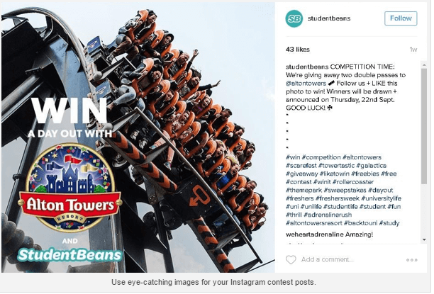 4 Instagram Contest Ideas to Engage Your Followers — Maverick Content