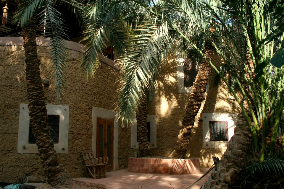 Mud and salt ecological house