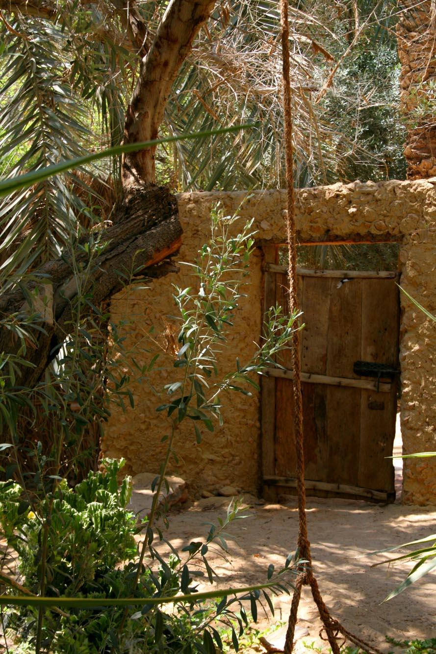 Palm wood door