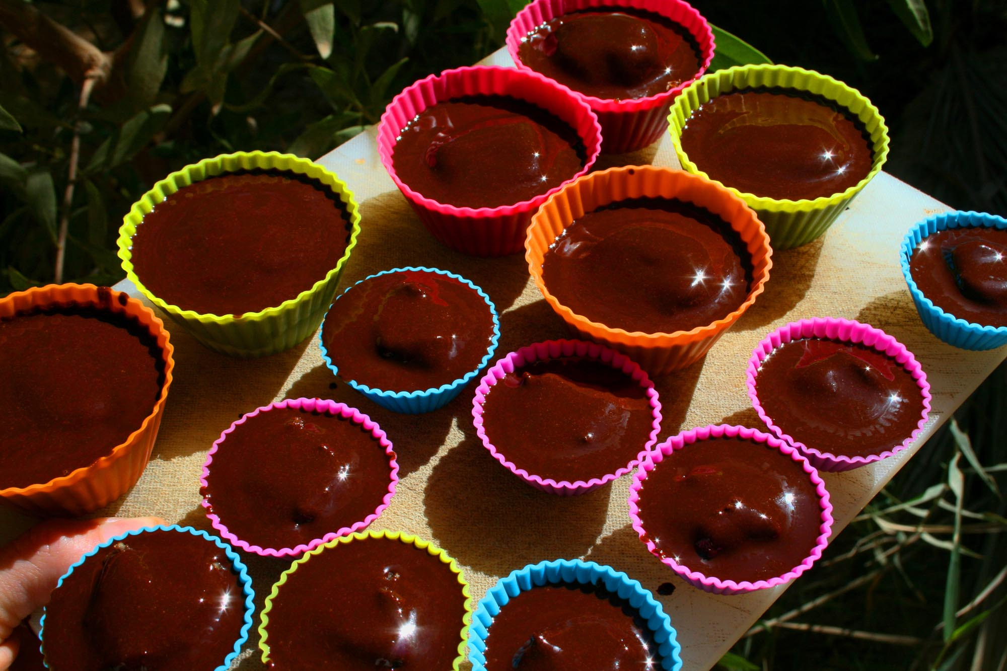 Organic peanut butter cups with raw chocolate