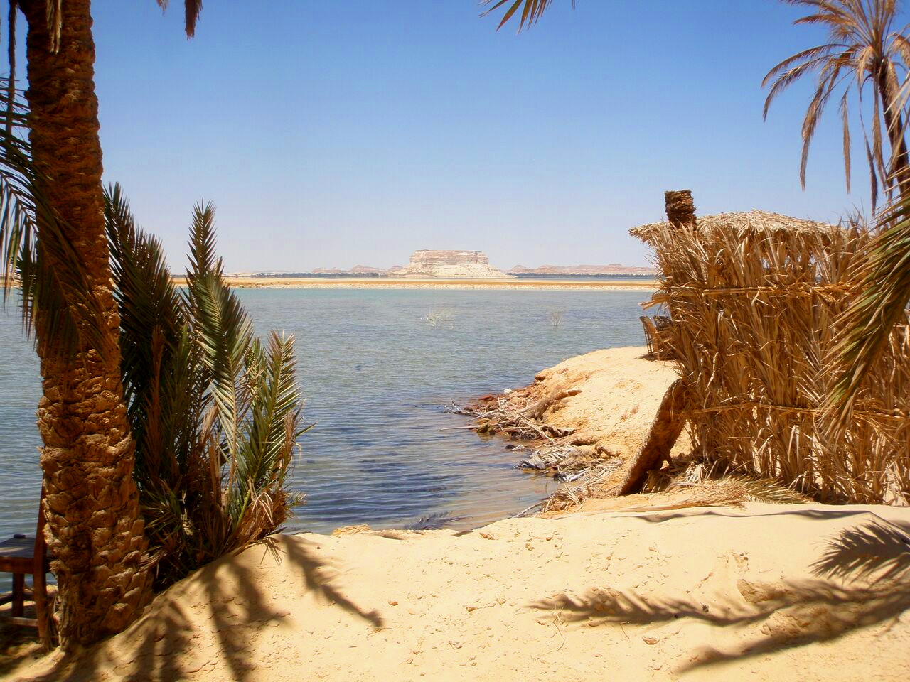 Swimming in Siwa Oasis