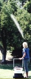 spraying_trees1.jpg