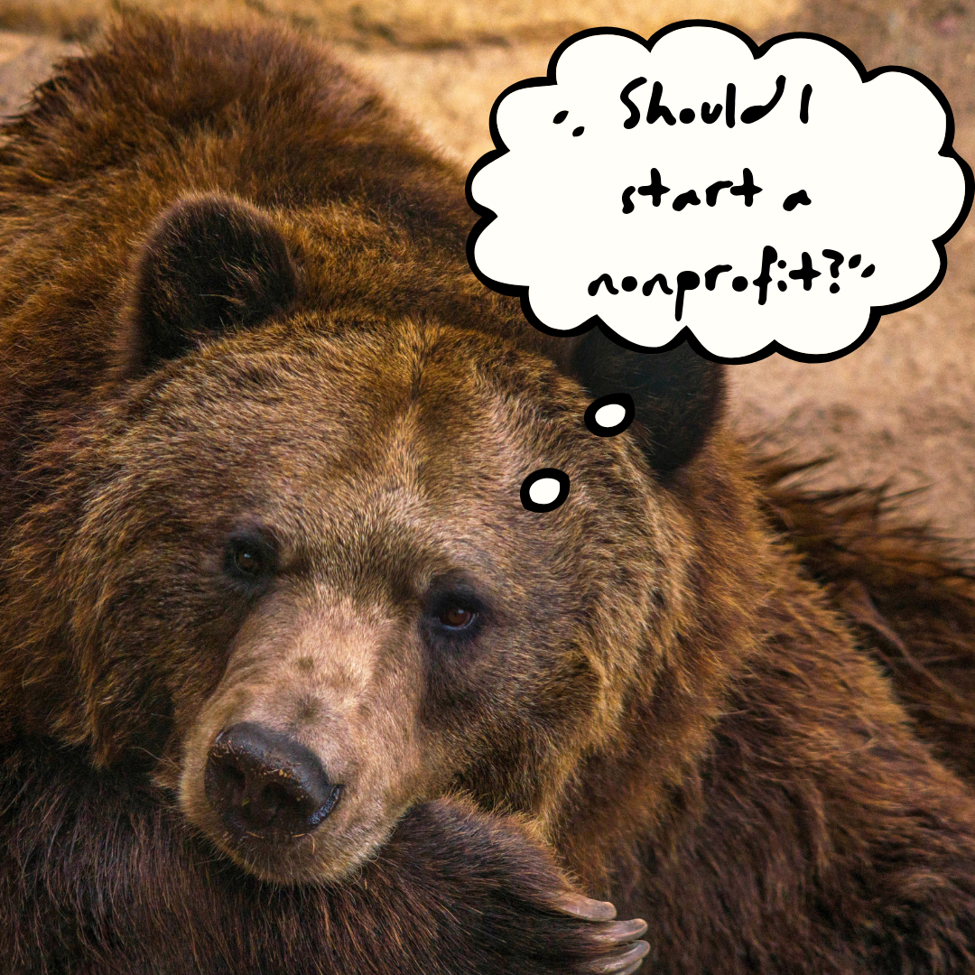 """Image: Thoughtful bear with thought bubble: """"should I start a nonprofit?"""""""