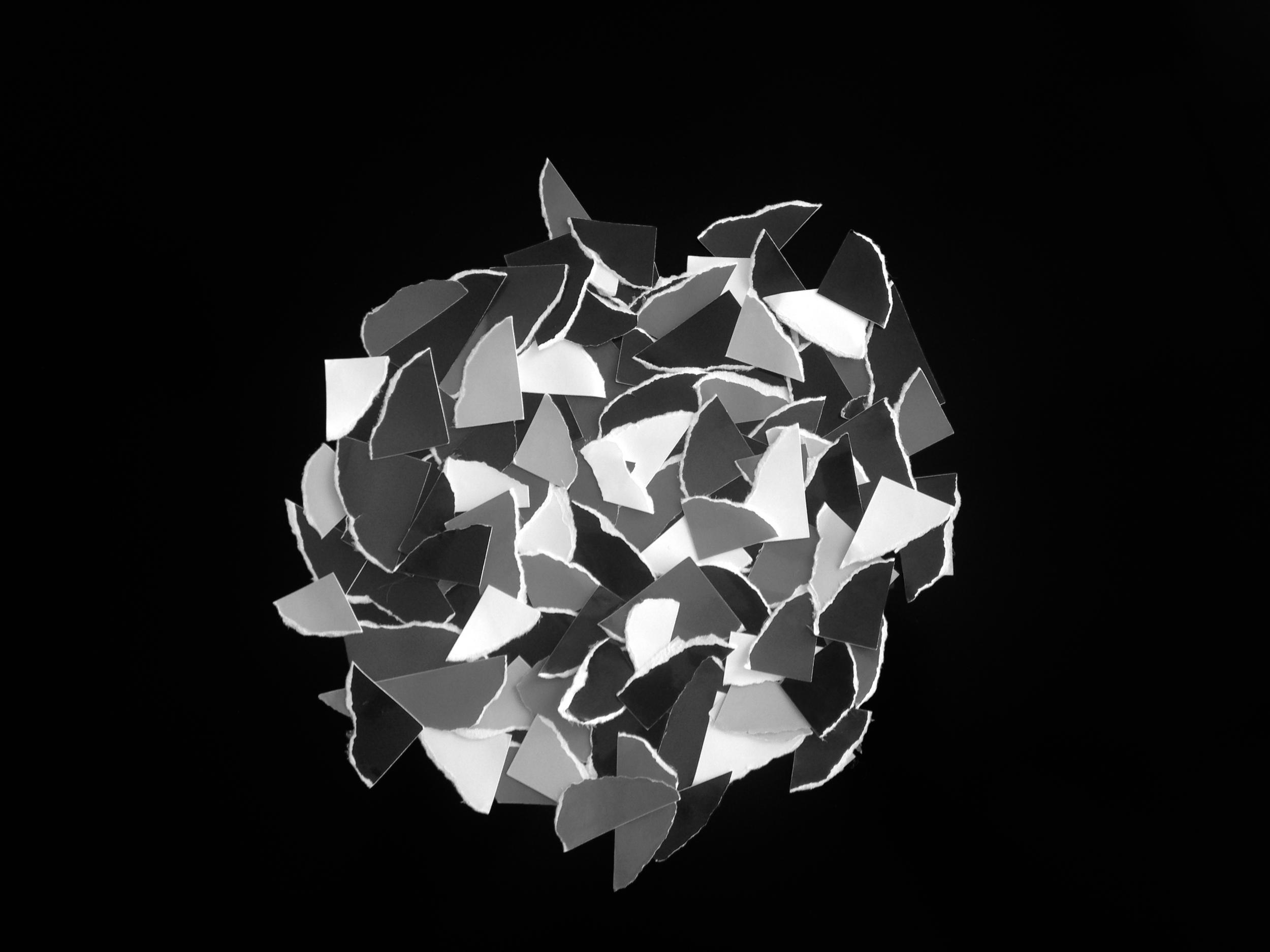detail of collaged  gelatin silver prints