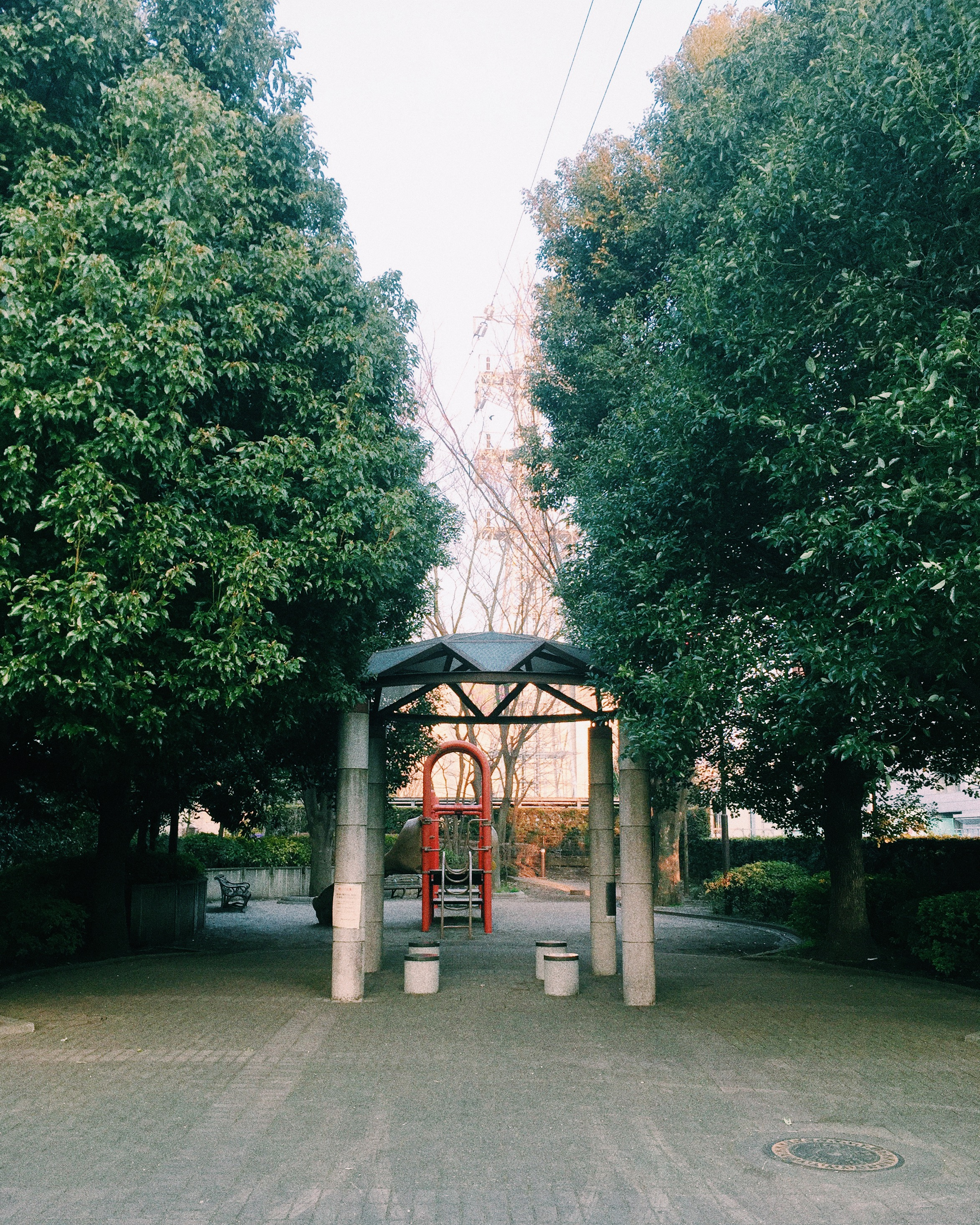 Mitaka, Spring 2015.