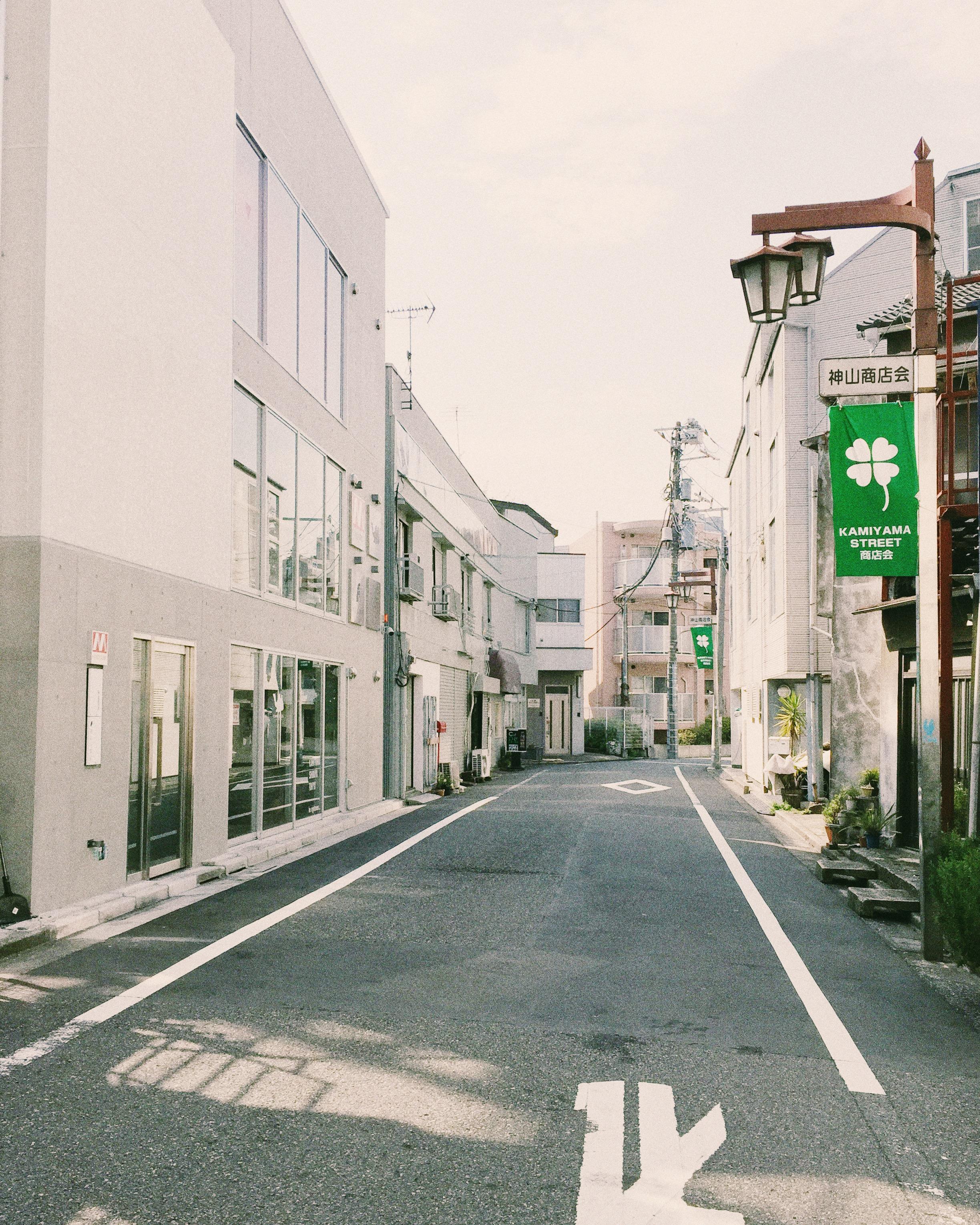 Kamiyama Street, Spring 2015.