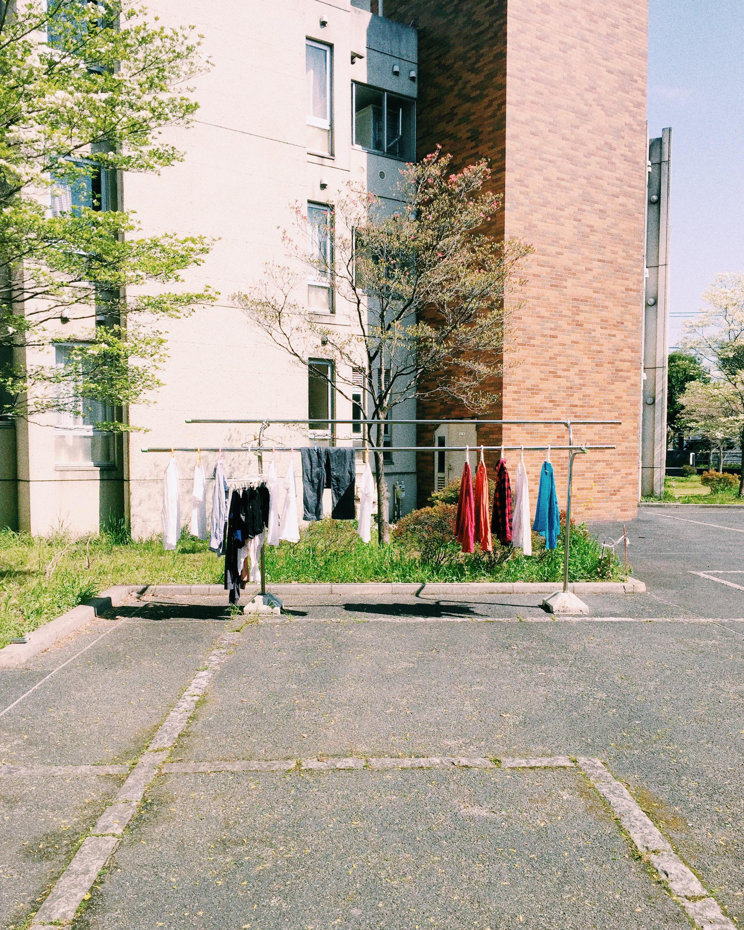 Mitaka International Hall of Residence, Spring 2015.