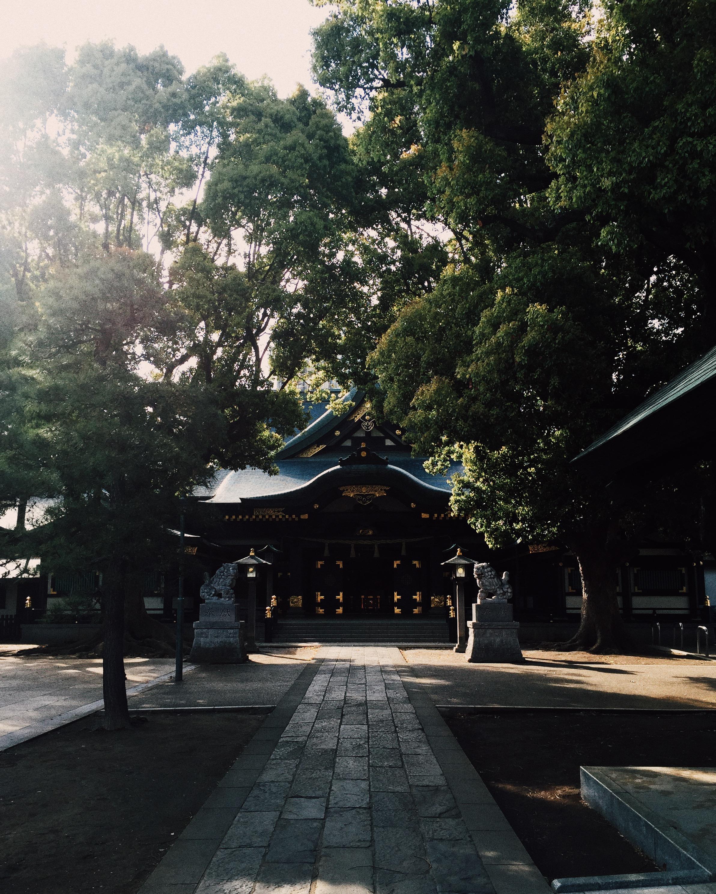 Hosenji, Spring 2015.