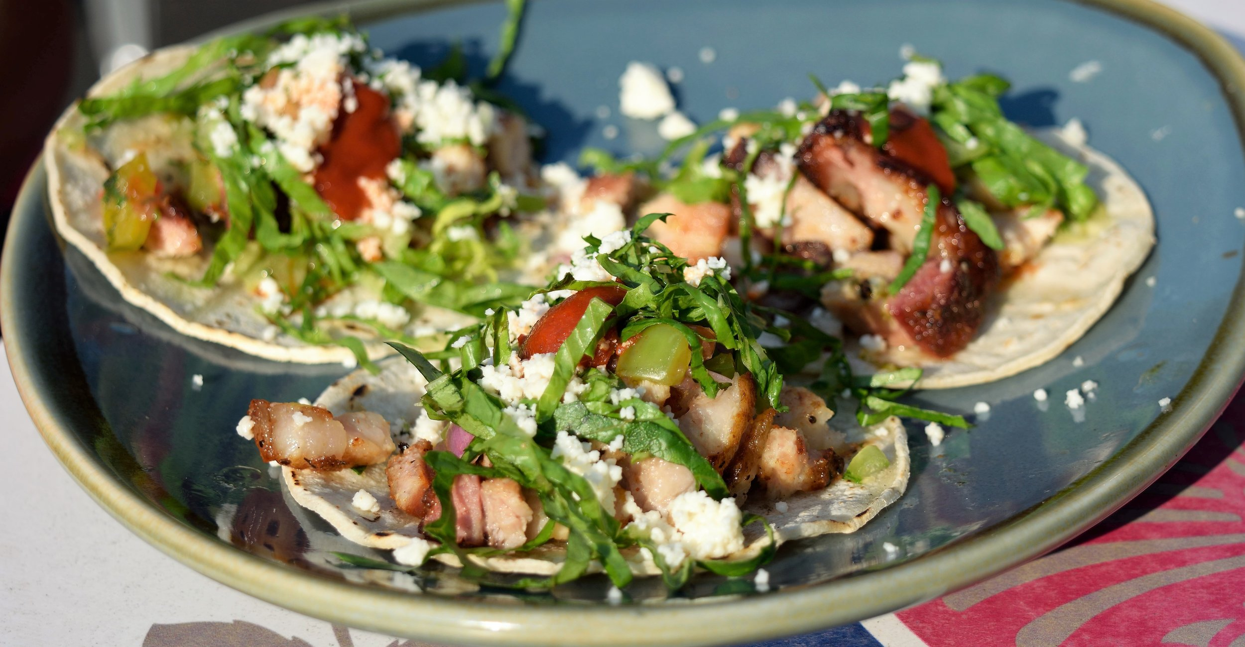 Pork Belly Tacos! Who doesn't like tacos!?