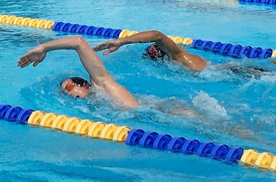 schwimmen02.jpg