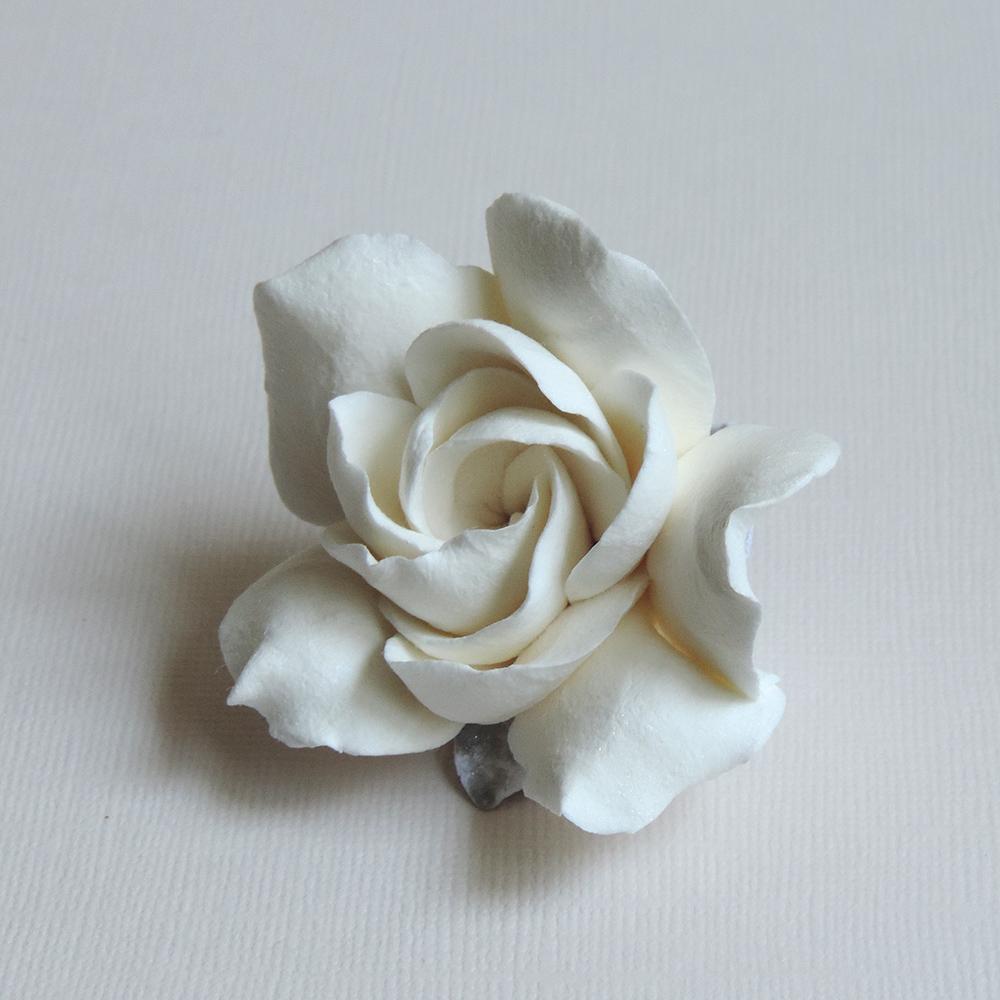 Gardenia_01.jpg