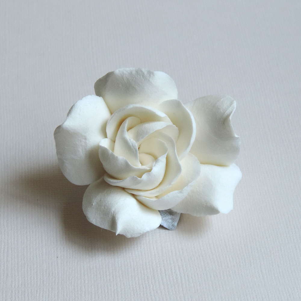 gardenia_02.jpg