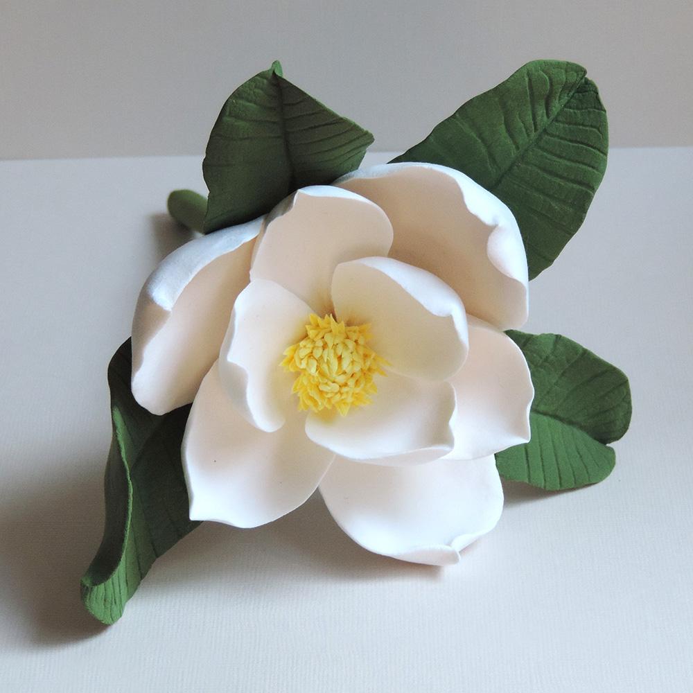 magnolia_01.jpg