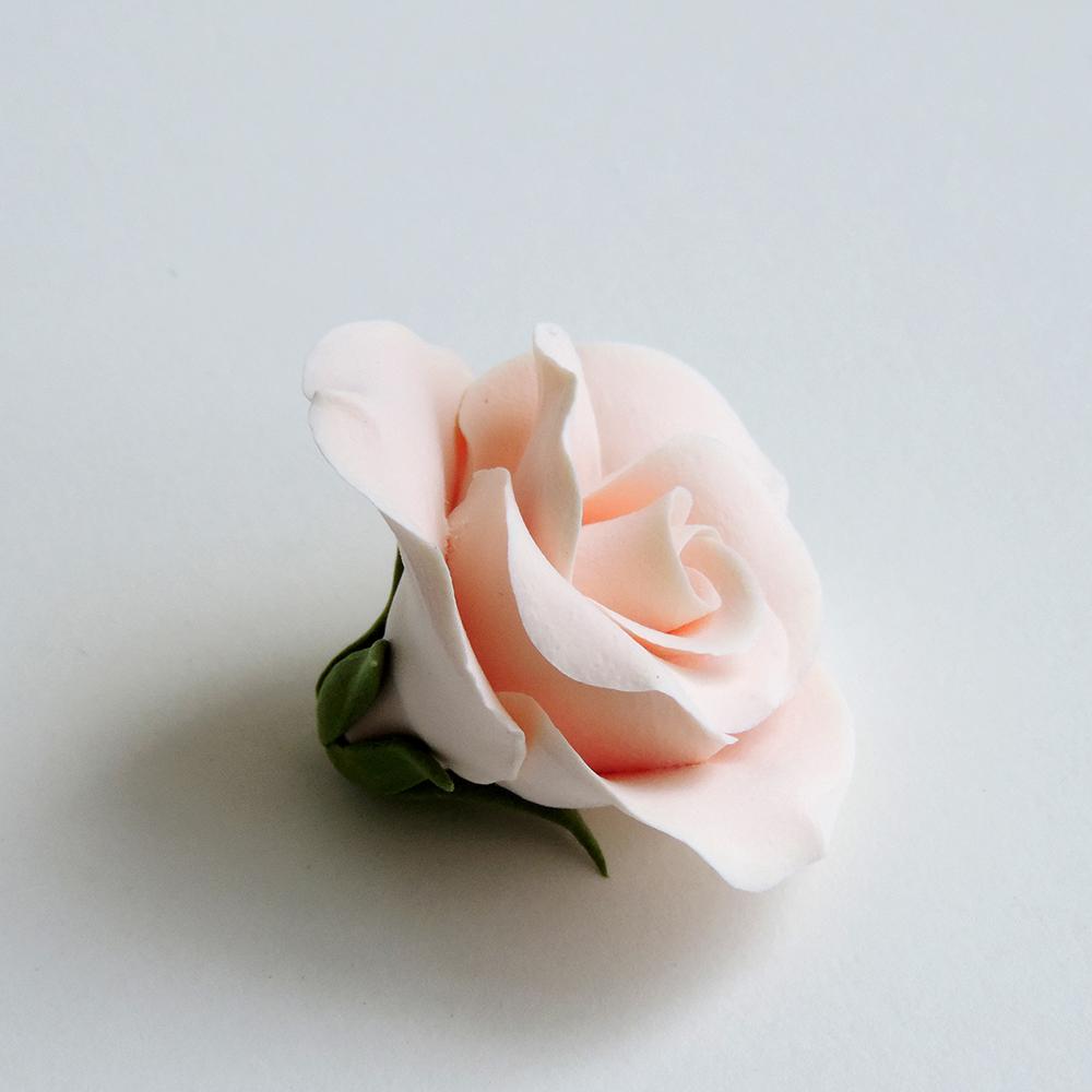 Rose_02.jpg