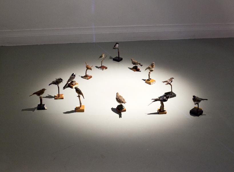 Birds in Formation no 2