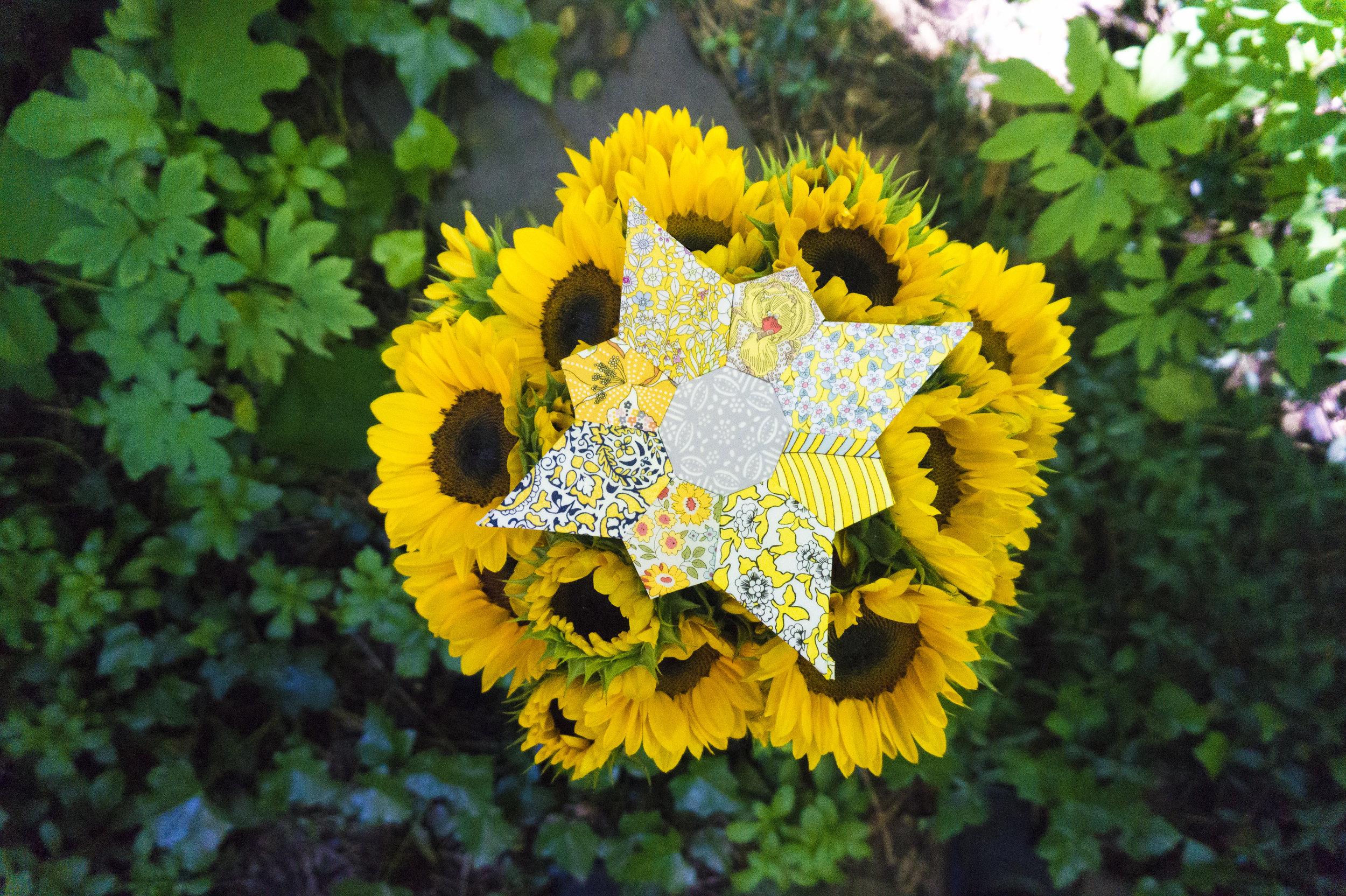 sunflower mischief.jpg