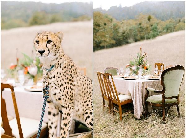 oregon & destination wedding photographer olivia leigh photography_0720