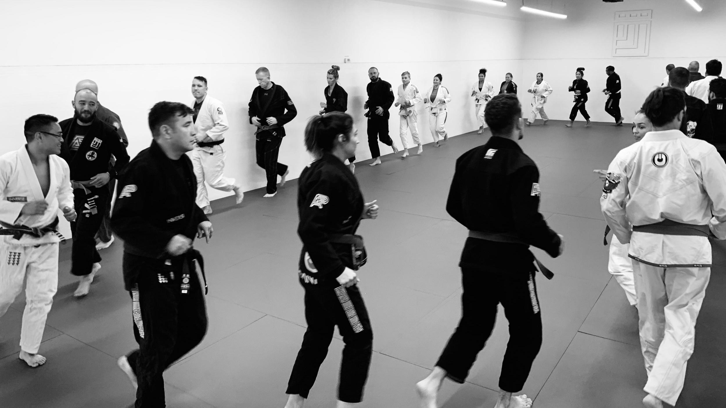 Inverse Jiu Jitsu Vail
