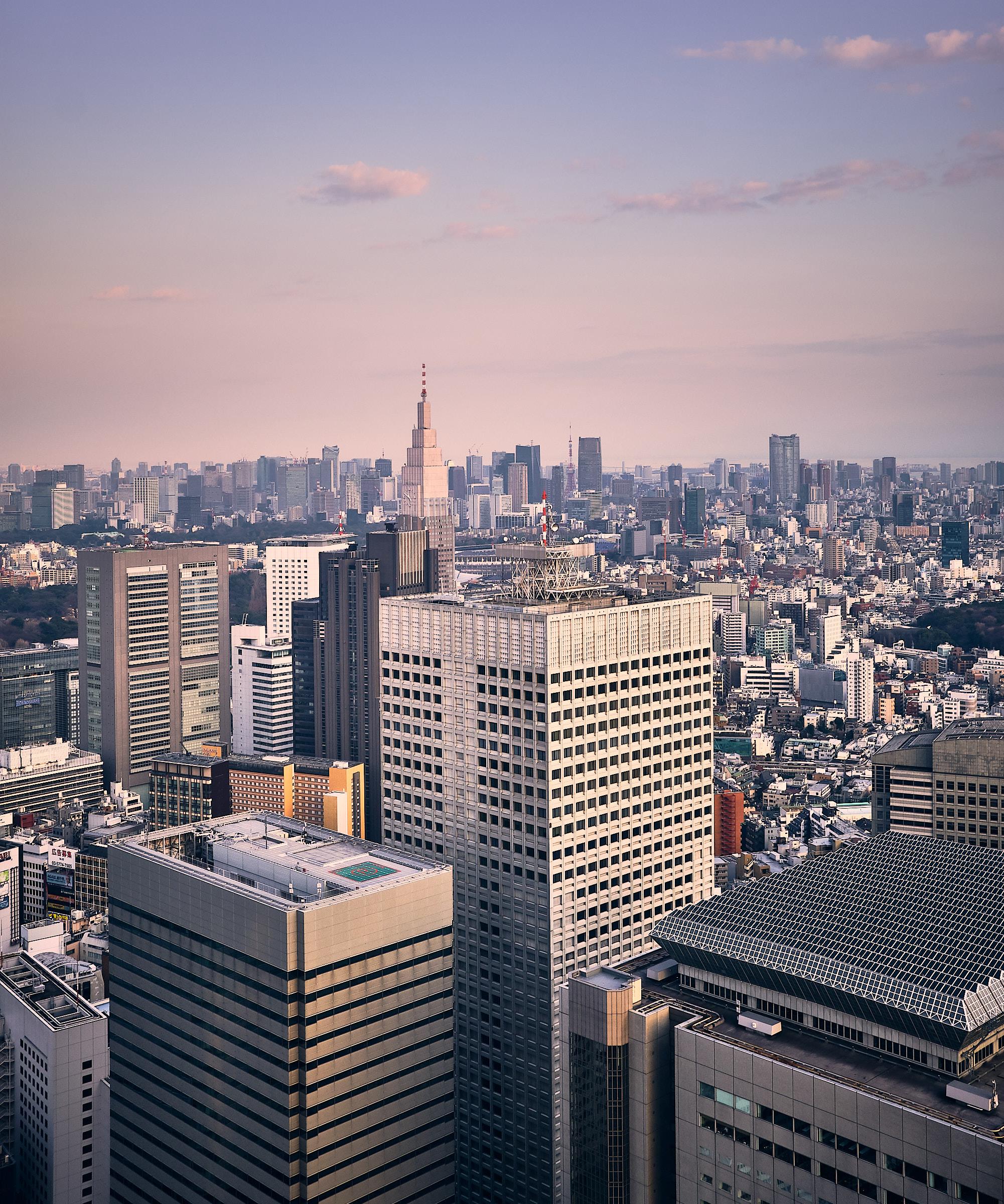 Tokyos nya stadshus