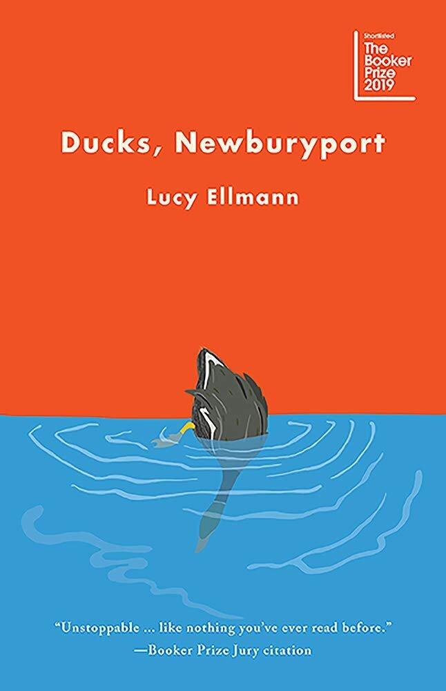 ducks newburyport.jpg
