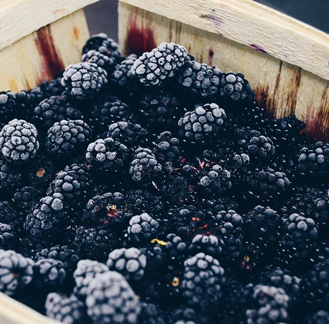 Looking for a great day trip this holiday weekend? The Bremerton Blackberry festival is a great opportunity to fit both a fun ferry ride and lots of delicious blackberry pie into one day.  Find out more at blackberryfestival.org  Happy Picking! xoxo Vioure  #staywithvioure #travelseattle #blackberryfestival #bremertonblackberryfestival #endofsummer #labordayweekend #washingtonstateferries