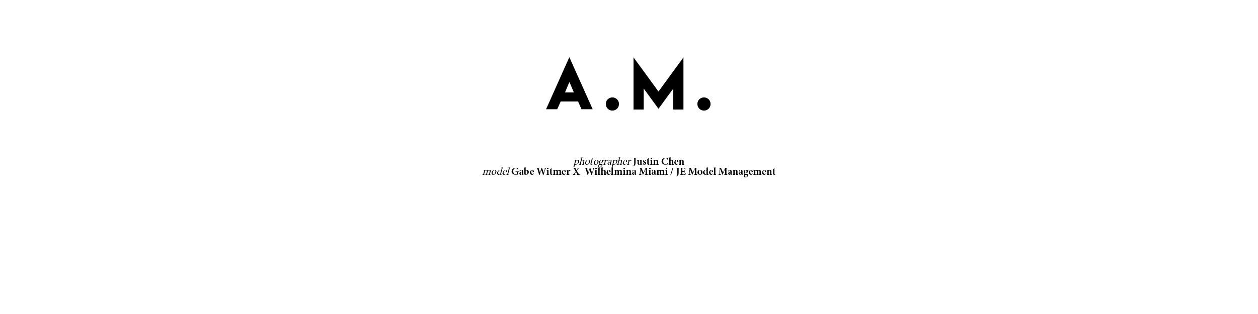 AM_title.jpg