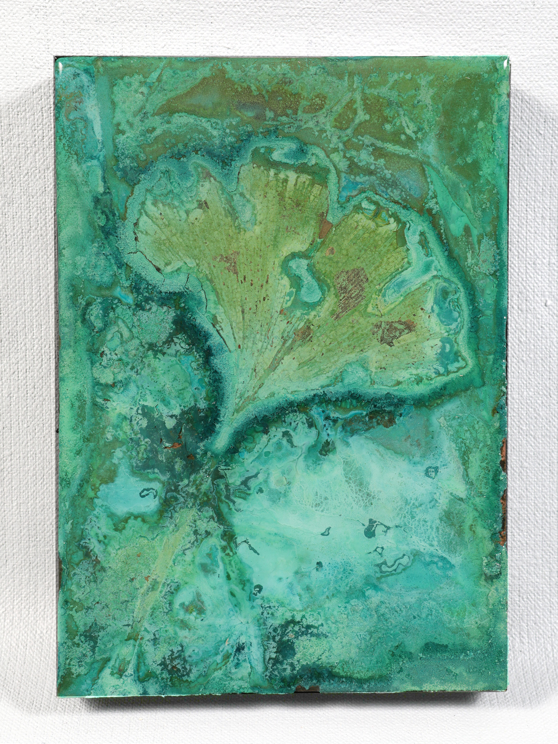 "Ginkgo Biloba | Abstract verdigris on copper | 5"" x 7"""