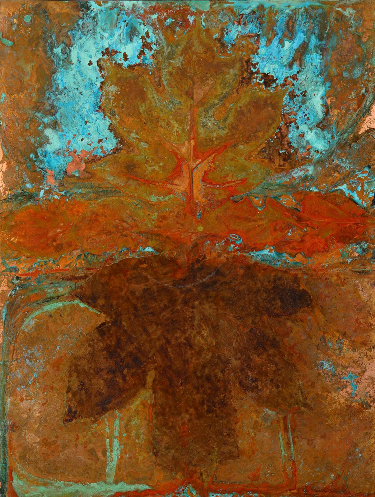 Oak Leaf Hydrangea #8942