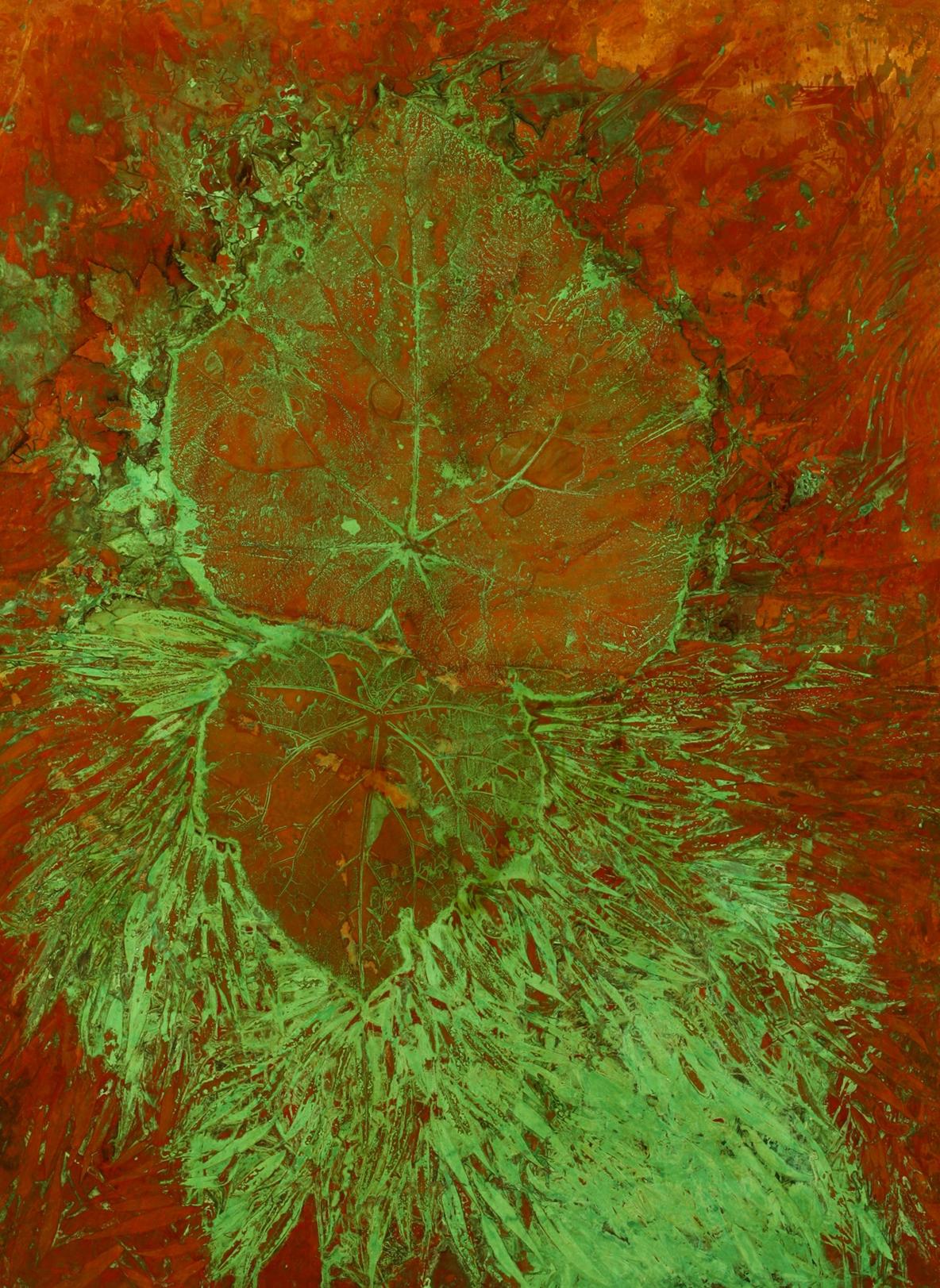 Paulownia, reflected