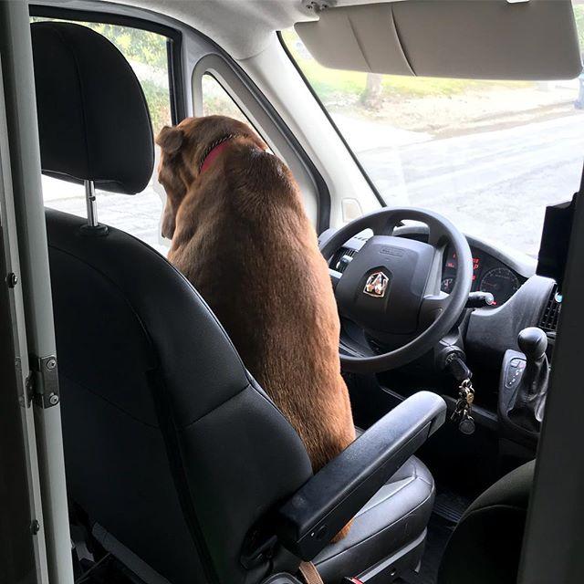 My chauffeur. 🤣