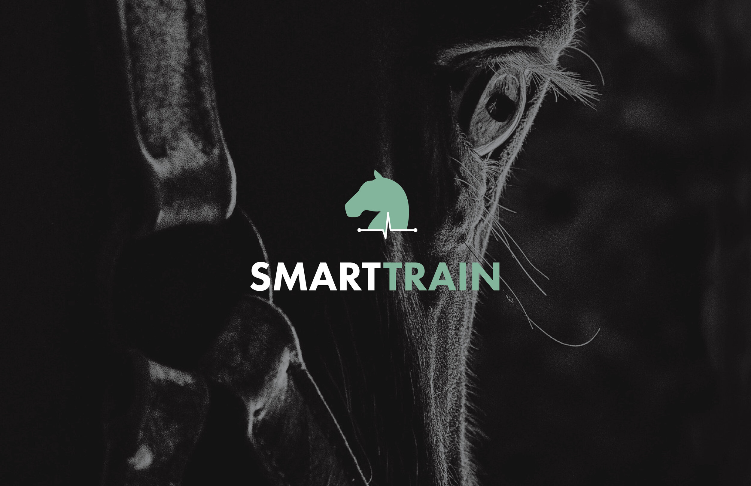 smartscreen.jpg