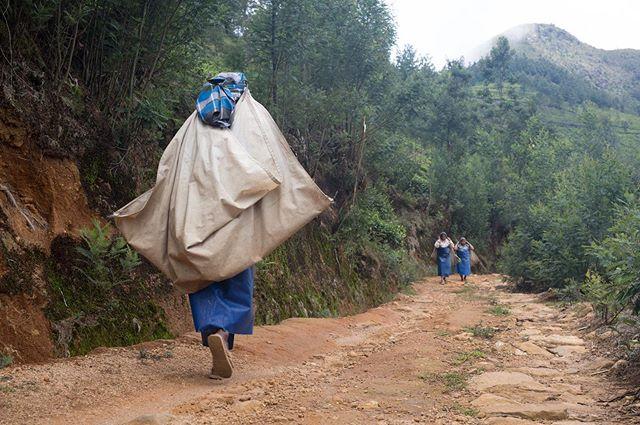 Spent a few hours following these tea pickers around the highest plantation in India. Lovely people. #travelphotography #travelphotographyindia #kerala #kolukkumalaiteaestate #documentaryphotography