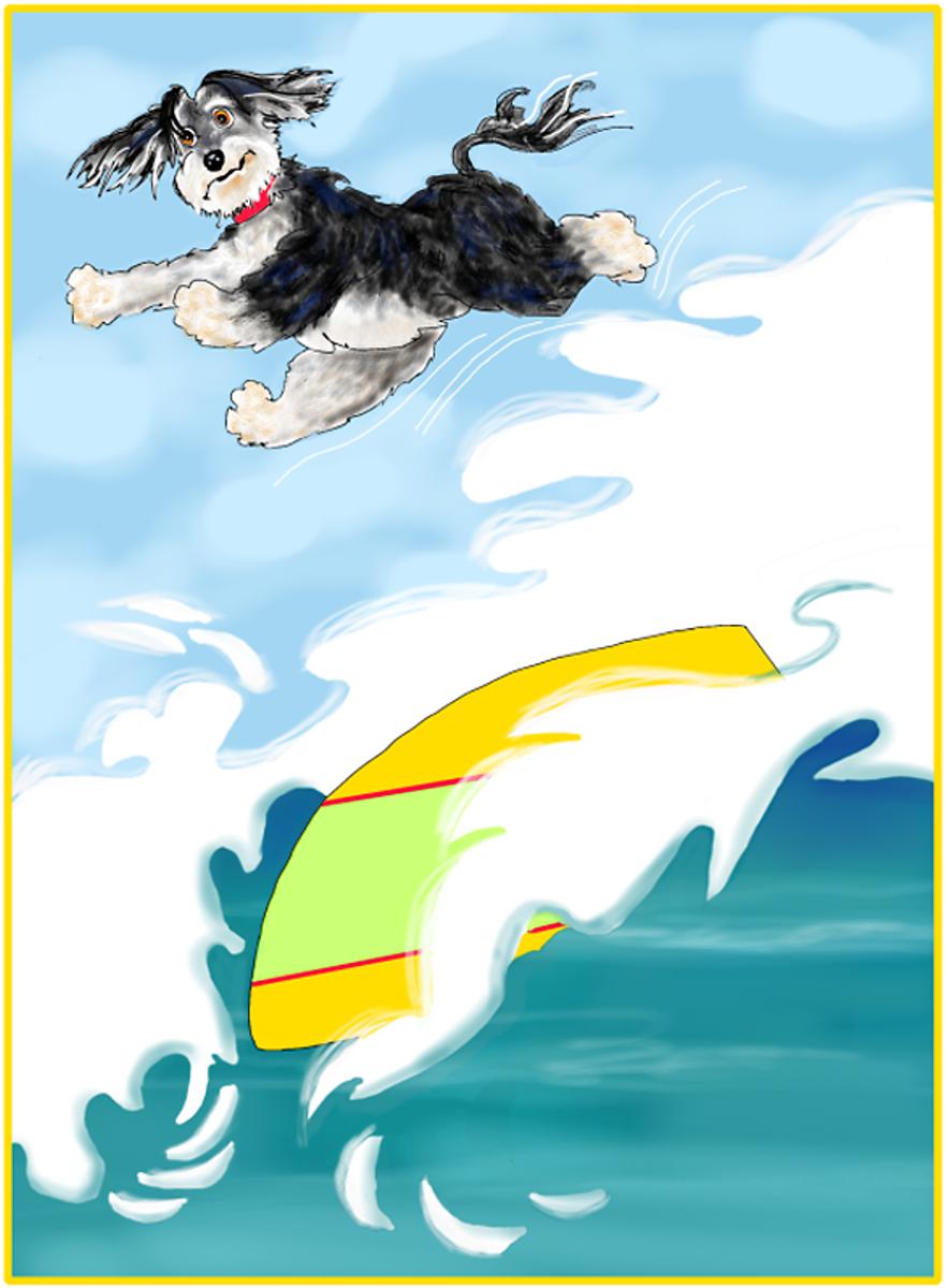 Rocket Surfing, Illustration by Elizabeth B Martin