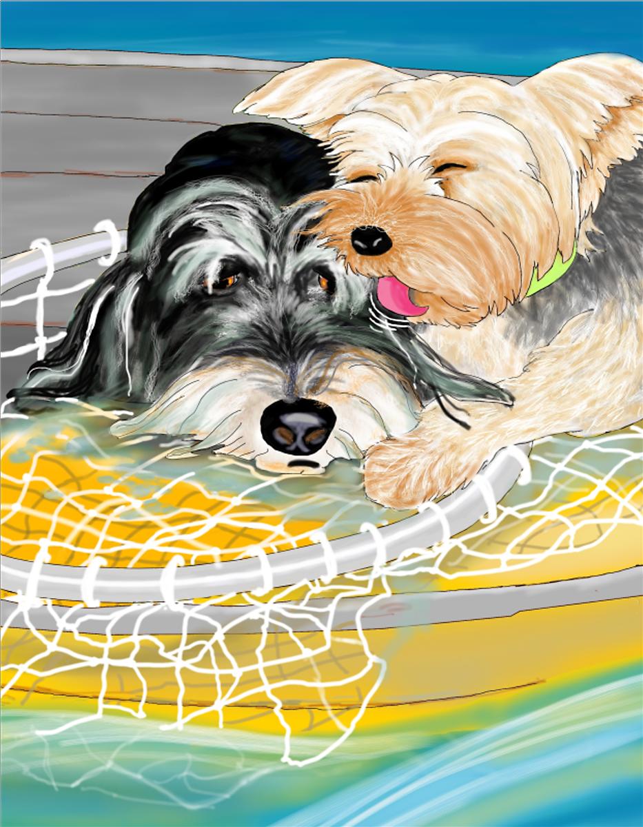 Henry and Rocket, Illustration by Elizabeth B Martin