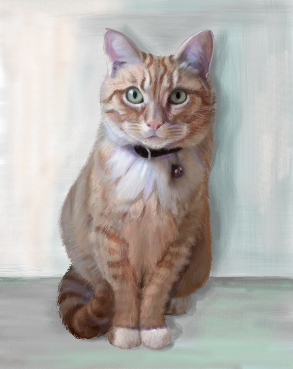 Zoe, a pet portrait by Elizabeth B Martin
