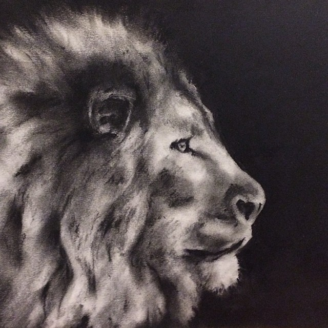Sher  - charcoal - 2016 - stanford